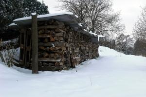 Burn dry firewood